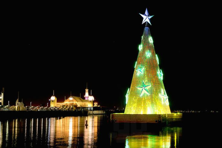 creative production services geelong floating christmas tree corio bay australia
