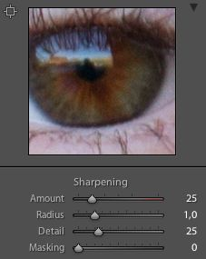 Lightroom 3 has a pretty clever sharpening system. Isn't it funny how when you look at a shot, you think it looks pretty great until you get some sharpening going and then you realize that it wasn't even close to being sharp? That said, sharpness isn't the most important thing to many photographers and sharpening …