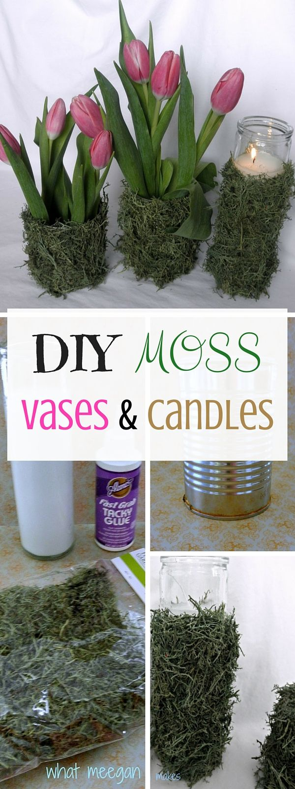Check out the tutorial: #DIY Moss Vases #crafts #homedecor