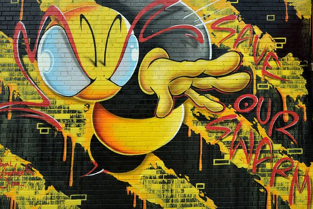 The Royal King Bee by Eddie C3, via Flickr