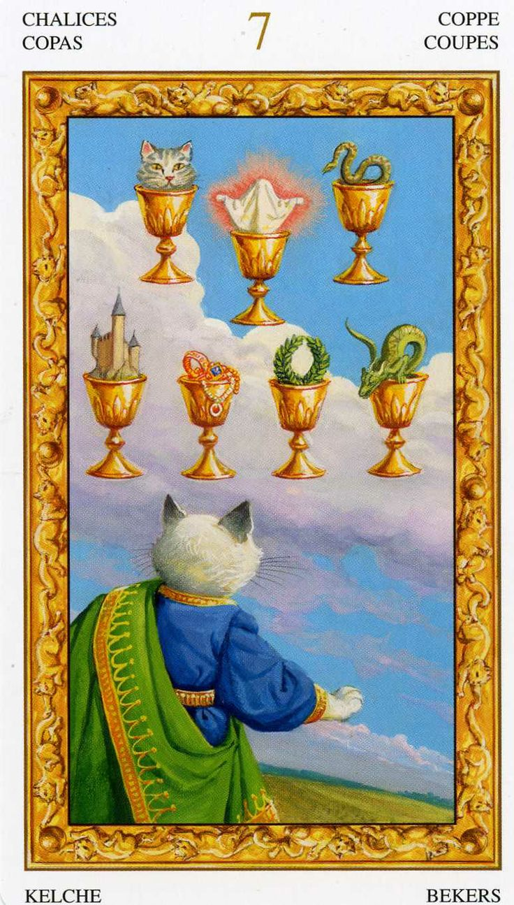Tarot D The Didactic Tarot By Jeffrey M Donato: 98 Best Images About Cats In Tarot: Tarot Of The White