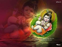 Happy Janmashtami Festival Hd Wallpaper,Happy Janmashtami Greetings With Shree Krishna Birthday Greetings For Janmashtami Festival HD Wallpaper