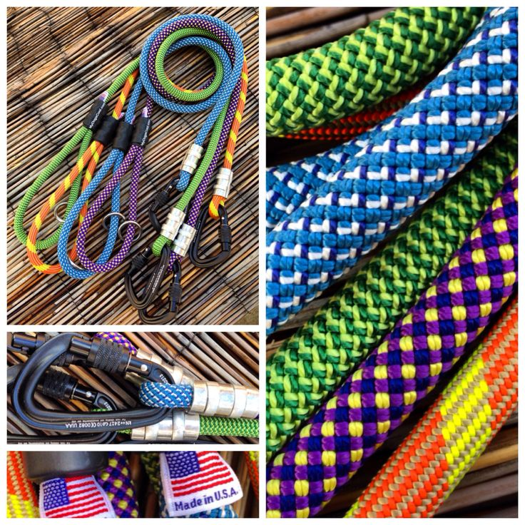 Inexpensive Dog Collars And Leashes