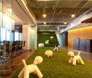 Artificial Grass Delhi NCR - Sports Grass and Synthetic Artificial Grass Suppliers & Importers - Delhi NCR (India)