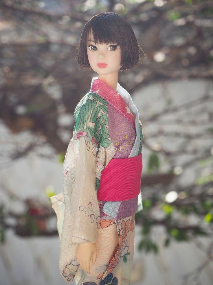 Model : CCS-momoko Today's 1312