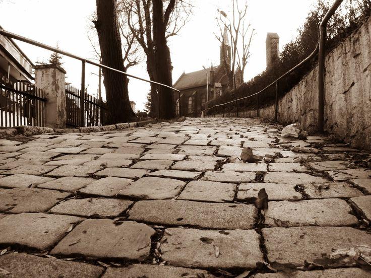 Wzgórze św. Małgorzatki | niedawne odkrycia archeologiczne dowodzą, że w tym miejscu istniał wczesnośrednioweczny gród | Bytom | fot. Kris Beskidzki | szlakiibezdroza.blogspot.com