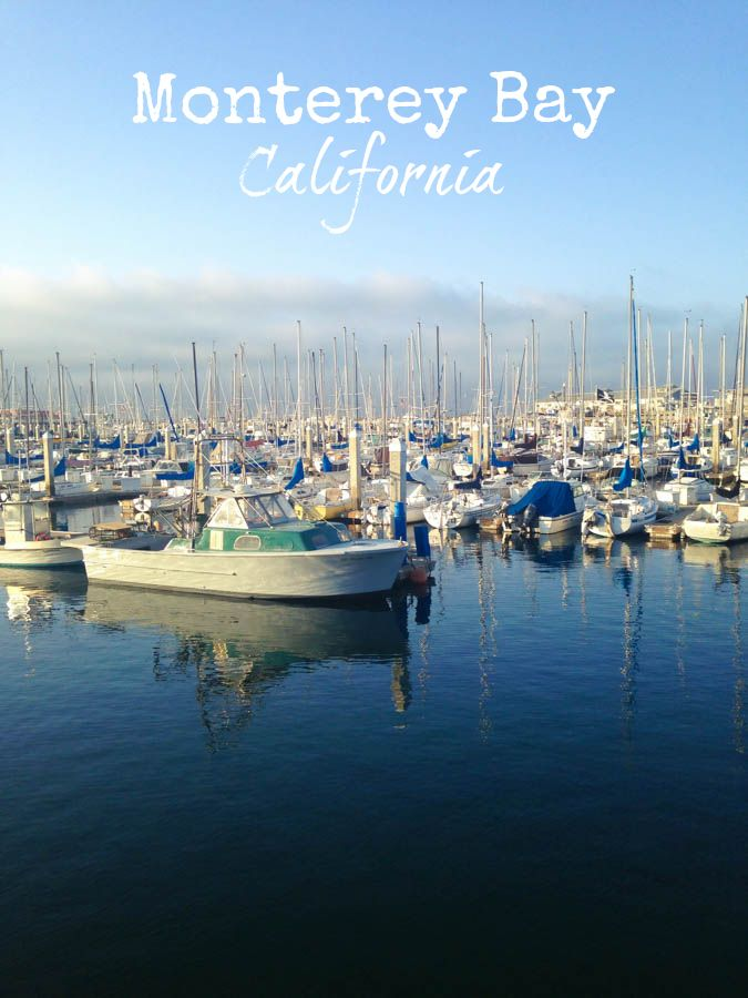 The Best of Monterey Bay, California - including the Monterey Bay Aquarium, Point Lobos State Reserve, Earthbound Farm Organic Farm Stand, Cindy's Waterfront Bistro and Pacific Grove, this is the best of Monterey Bay, California! #travel