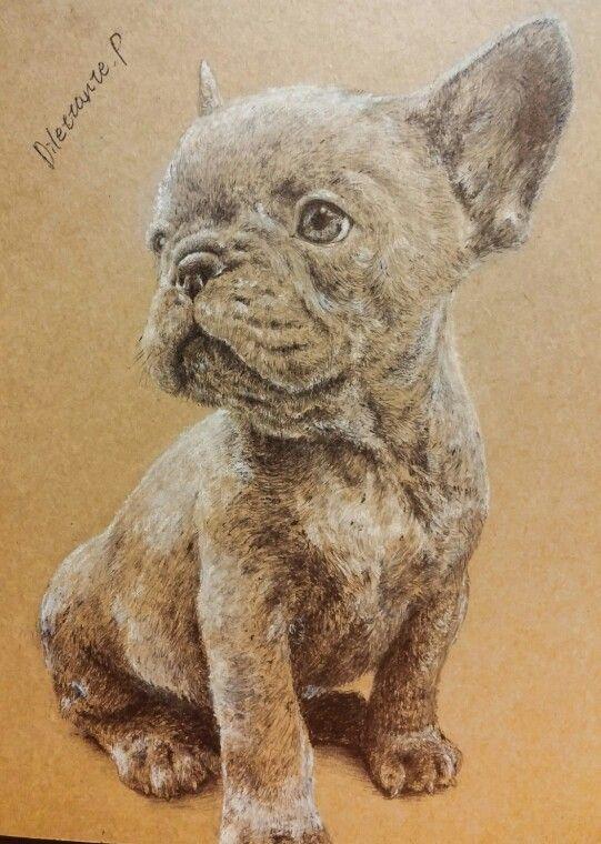 #draw #drawing #art #illustration #picture #Frenchbulldog #frenchbully #bulldog #bully #dog #puppy