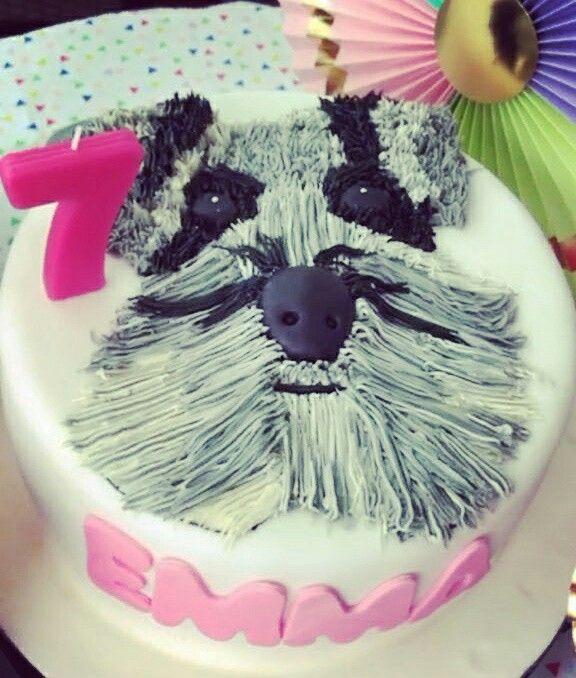 Cake dog..