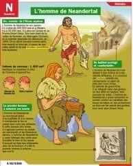 L'homme de Neandertal - Mon Quotidien, le seul site d'information quotidienne pour les 10-14 ans !