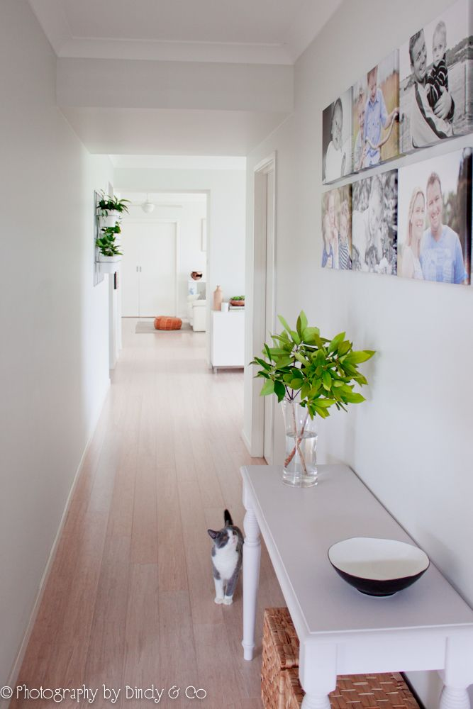 Completed hallway project by Bindy & Co. Whitewash bamboo flooring, hall table, vertical garden, british shorthair, family gallery.