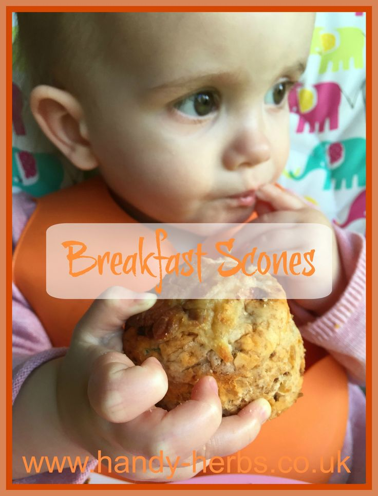 These Breakfast Scones are a healthy breakfast option to offer your child or even to add to a lunch box. Children will enjoy helping to make them and they can be frozen so are ideal for a last minute breakfast idea.