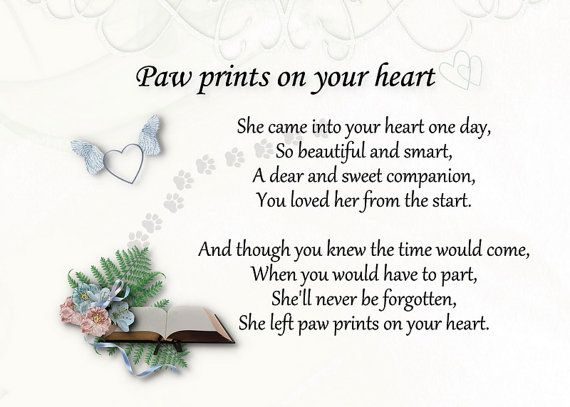 Loss of Dog or Pet - Pawprints Left by You Memorial Garden Stone ~~ I ...