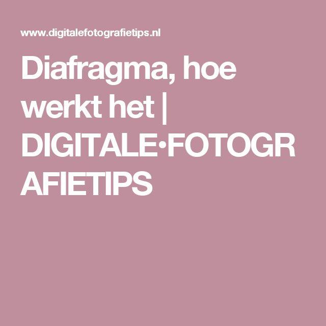 Diafragma, hoe werkt het | DIGITALE•FOTOGRAFIETIPS