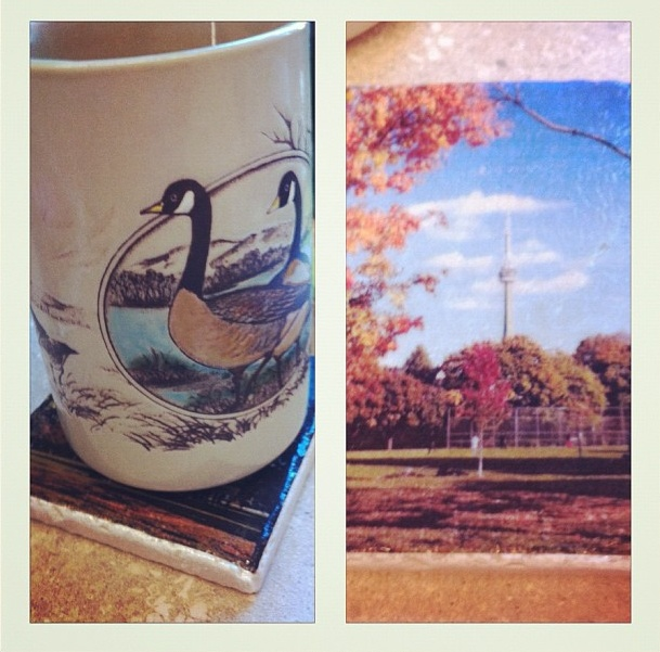 A Goose Mug on a Trinity Bellwoods Coaster.