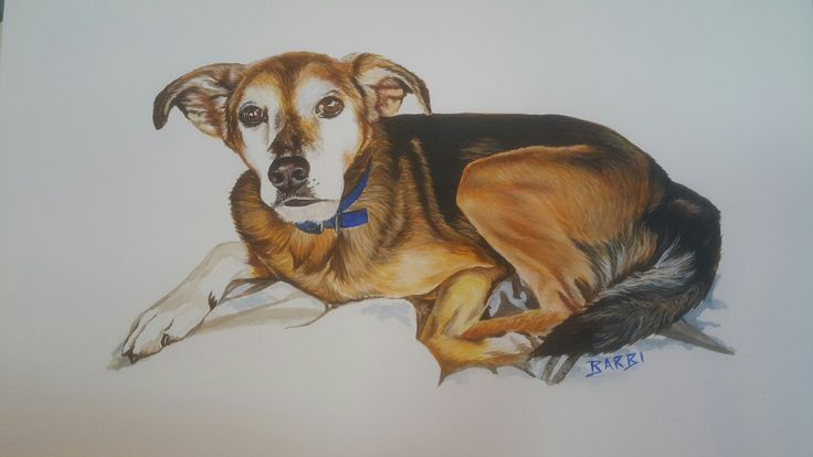 """""""Wesley"""" Acrylic on watercolour paper www.furryfaces.co.nz"""