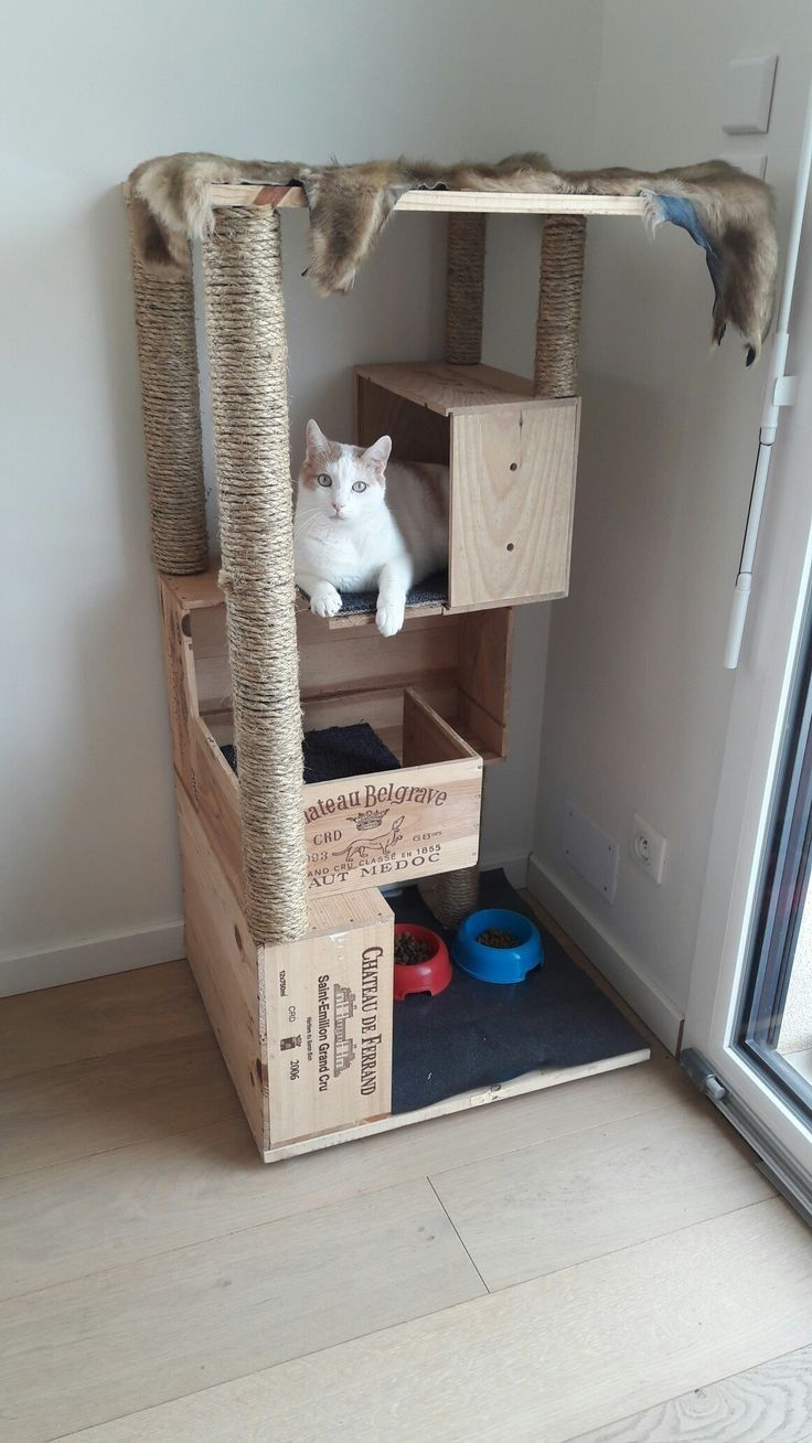 Pin By Analu On Decoracion Hogar Cat House Diy Cat Room Diy Cat Toys