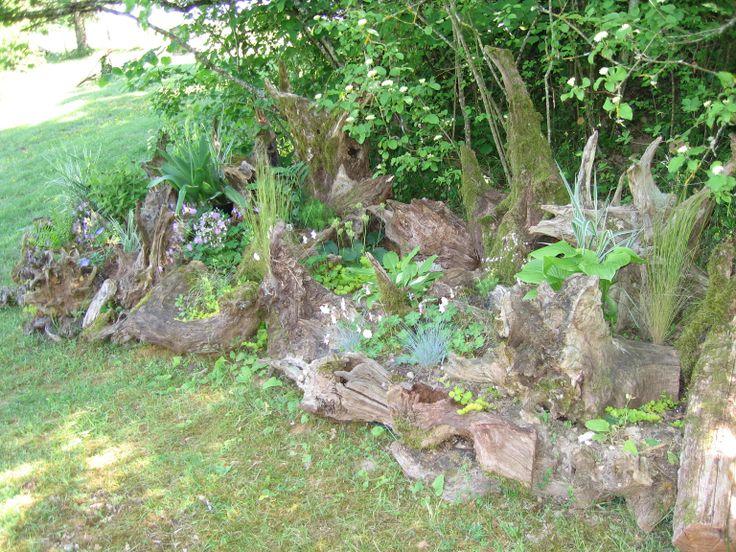My French Stumpery