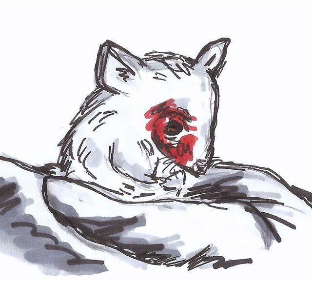 Las cifras exactas no están disponibles porque los ratones, ratas, aves y animales de sangre fría (que representan más del 95 por ciento de los animales usados en experimentación) no están cubiertos ni siquiera por la protección mínima de la Ley de Bienestar Animal de los Estados Unidos y por tanto no son contabilizados. Para probar cosméticos, limpiadores del hogar y otros productos de consumo, cientos de miles de animales son envenenados, enceguecidos y matados cada año por crueles…