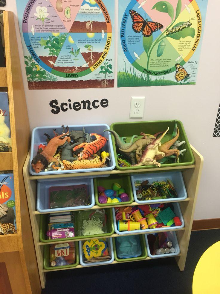 Pre-K classroom set up. Science shelf.