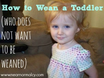 Near Normalcy: How to Wean a Toddler (who does not want to be weaned) OMG brilliant!!!