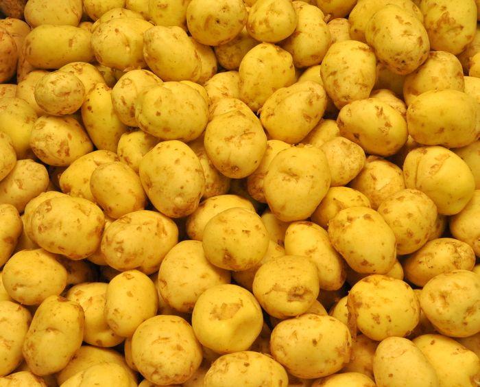 Les 203 meilleures images du tableau pommes de terre sur - Comment cuisiner les pommes de terre de noirmoutier ...
