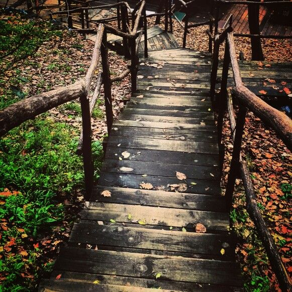 İnersin. #merdiven #ağaçev