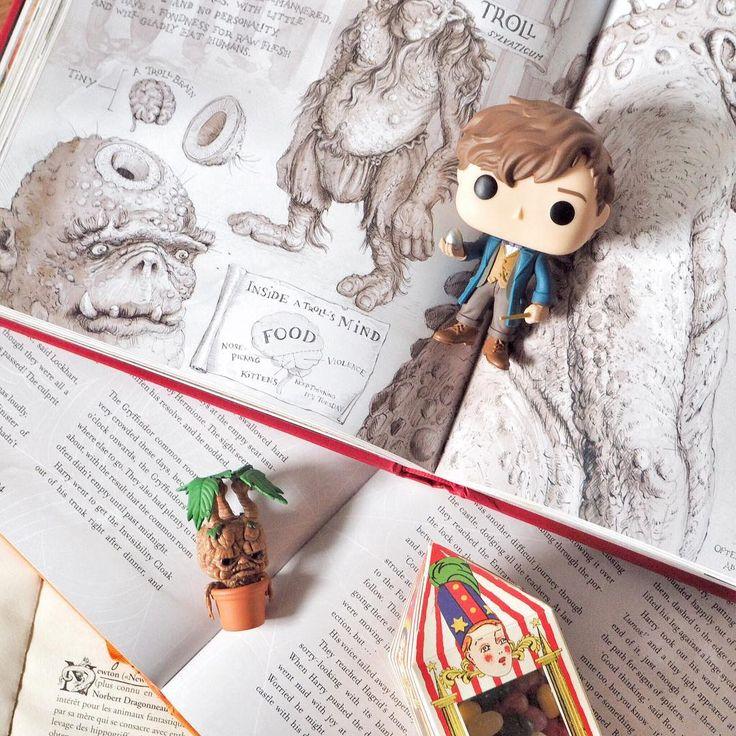 J'ai mon petit Newt ! ❤ Il s'était glissé dans la dernière case de mon calendrier de l'Avent. 🙊 Cette année, Noël aura été plus que placé sous le signe de la magie ! 🌟 J'ai aussi reçu une écharpe de Gryffondor et les jumeaux Weasley en funko pop ; trop contente ! 🎄 • Et vous, vous avez été bien gâtés ? ☁️ • #potterhead #fantasticbeasts #newtscamander #harrypotter #funkopop #funko #book #reading #blogger #blogueuse
