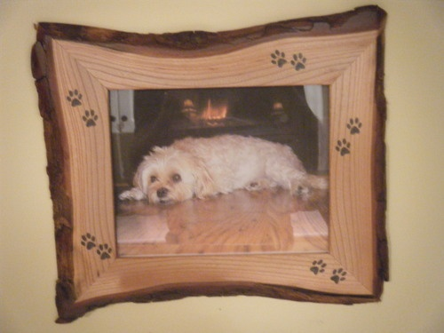Live Edge Dog And Cats Picture Frames I Love Animals