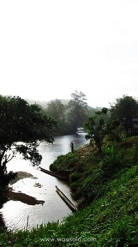 Uno de los departamento que aporta mas biodiversidad Cultural y Étnica de Colombia capital de los Aguaceros,Selvas y Dos Mares