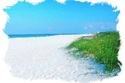 Florida Beach Vacation Planner: Beach Profiles N to Z