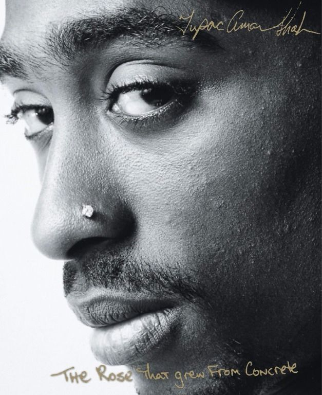 The Rose That Grew From Concrete (New Paperback) by Tupac Shakur