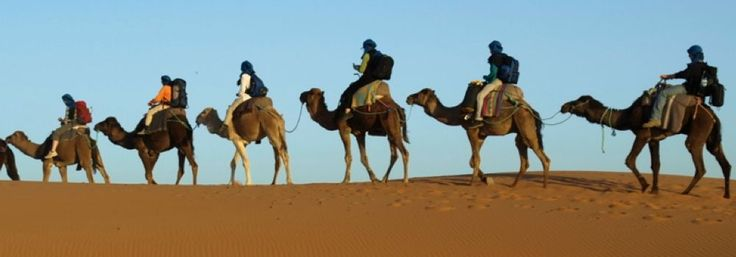 3 days desert tour from Fes to Marrakech - Desert trip from Fes via Ifrane, Volubilis, Meknes, Azrou, Zzi valley - Fossils in Sahara desert Erfoud and one night camel trekking in erg chebbi sand dunes in a berber camp with nomads and music under the stars