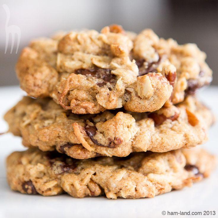Awesome Oatmeal Chocolate Chip Cookies | ham-land.com