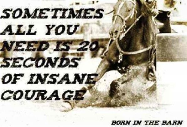 barrel racing quotes | Courage | ;Barrel Racing Quotes