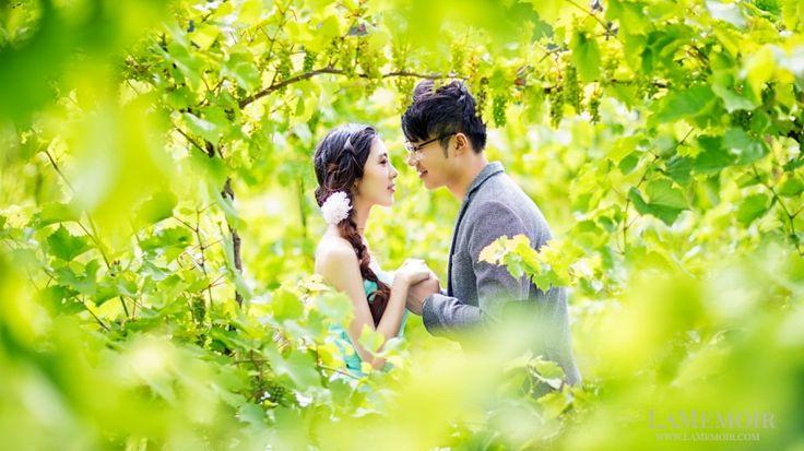 Pre wedding photoshoot with our lovely bride and groom at a vineyard near Toronto.  #toronto #wedding #photographer #torontoweddingphotographer #LaMemoir #engagement #lavenderfarmtoronto #elegant
