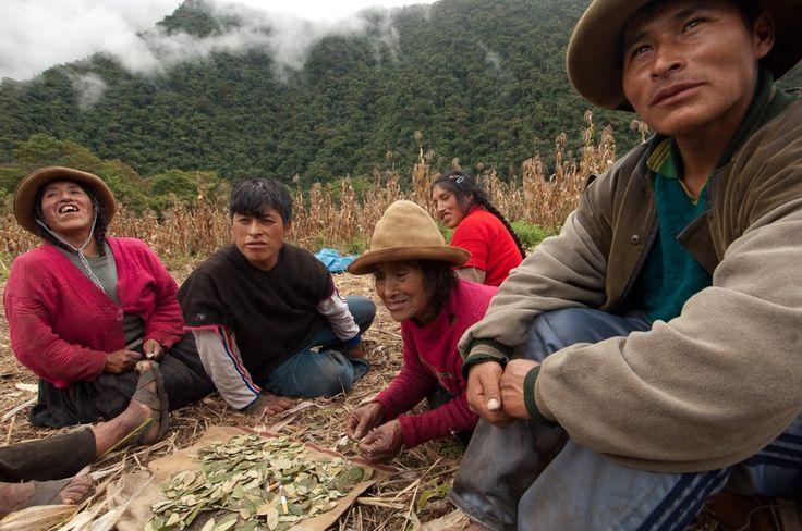 Q'eros qui étalent des feuilles de coca sur le sol,  photo: TRANSHUMANCIAS VOYAGES