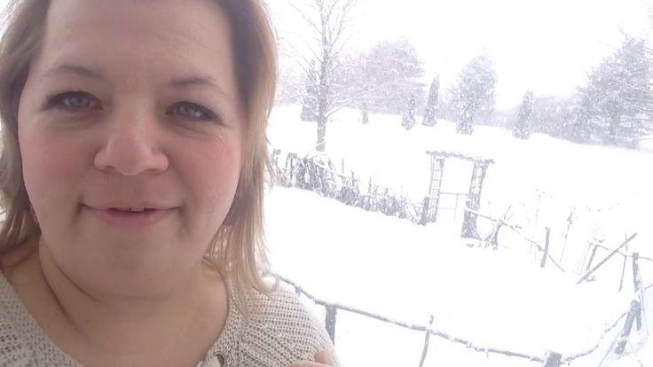 We're stuck in a snow storm!! VSG update week #7