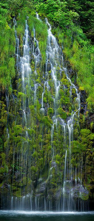 Mossbrae Falls, Dunsmuir, California, Mt. Shasta area http://papasteves.com/blogs/news