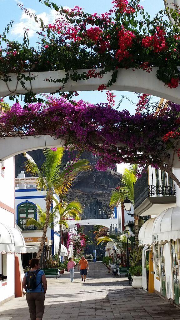 Mogan,Grand Canaria
