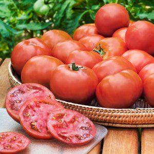 Heinz Classic Heirloom Tomato