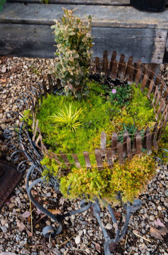 Fairy Garden At Farwest Landscape & Garden Center Boise