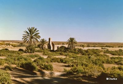 From Photos of some of our favourite places in Australia. Ruins of Dalhousie Homestead on the edge of the Simpson Desert - 1988