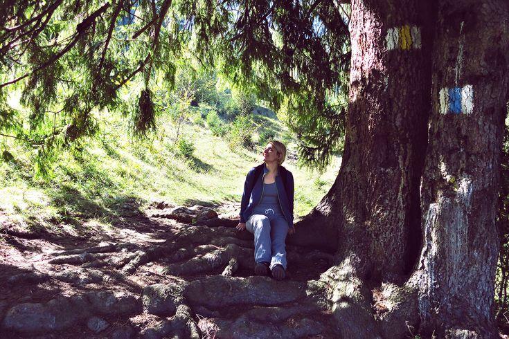 Piatra Craiului Autumn Wonderland – Chique Romania