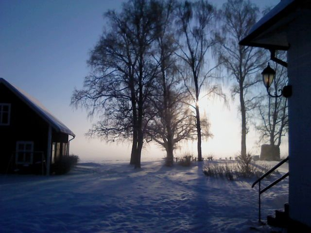 Winter morning view