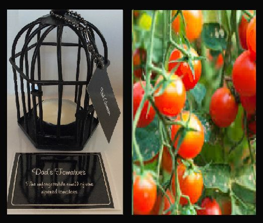 Dad's Tomatoes. The unforgettable smell of vine ripened tomatoes. . Triple scented soy tealight candles, in attractive birdcage. Perfect for that special gift for family or friends, or to evoke wonderful memories for yourself $US10.86