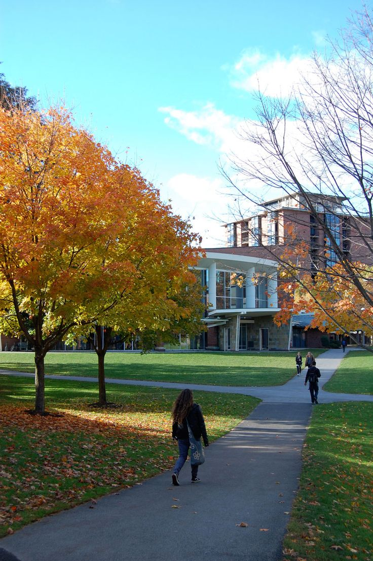 Fall photography at skidmore college in saratoga springs new york students walking around campus