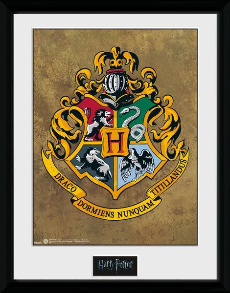 Harry Potter Hogwarts - Collector Print 30x40