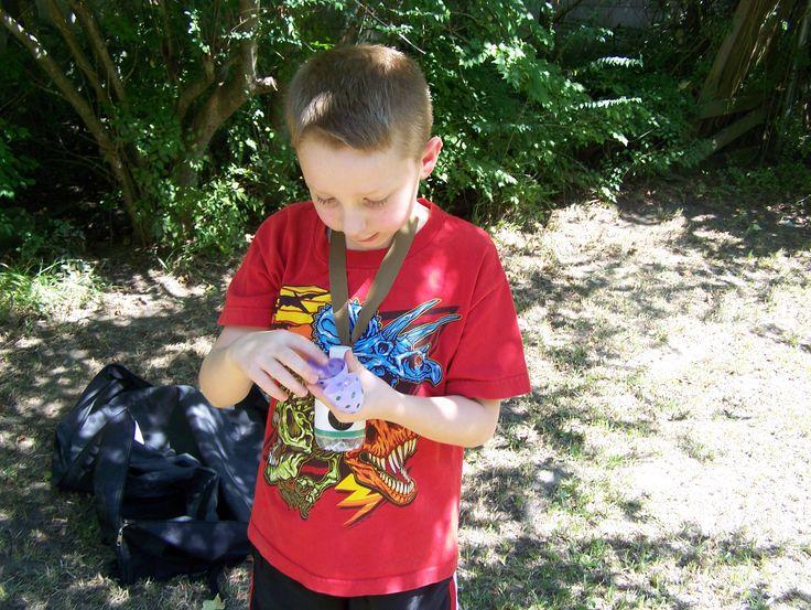 dino egg hunt,  plastic easter eggs with small dinosaurs inside