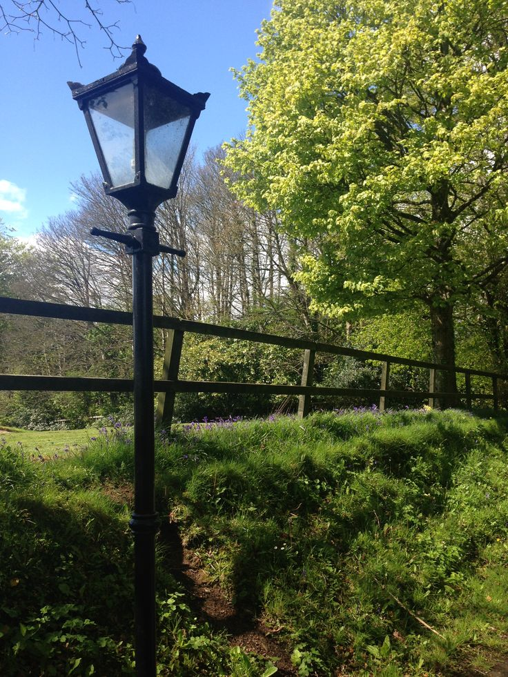 Our Castle avenues are dotted with pretty bluebells and cowslips this time of year...the blue skies are a speciality!